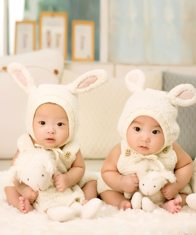 poupee reborn jumeaux